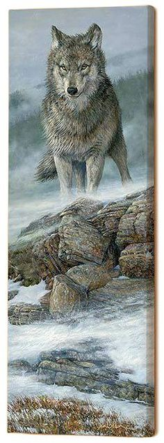 This stunning canvas print features a gray wolf standing on a rocky perch. The wolf's powerful gaze is captured perfectly in this print. Comes ready to hang and is the perfect way liven up a wall in y
