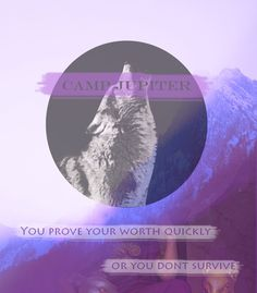True True...            The Roman camp—they're not so friendly. You prove your worth quickly, or you don't survive.- Jason Grace, The Lost Hero