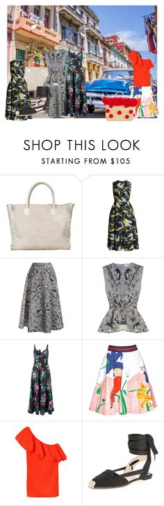 """Weekend in Havana"" by mpmongillo on Polyvore featuring Asha by ADM, Erdem, Monsoon, Alice + Olivia, Altuzarra and Nannacay"