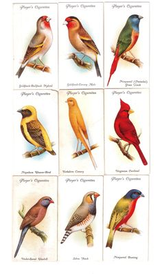 Player's cigarette cards from badcrafter