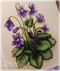 Sweet Violets rubber stamp by Flourishes, colored with Copic markers, she explains the coloring method very well Botanical Illustration, Botanical Art, Watercolor Flowers, Watercolor Paintings, Flower Sketches, Sweet Violets, Birth Flowers, China Painting, Copics
