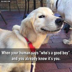 """Hey good boy is my name."""