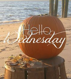 Happy Wednesday Quotes, Good Wednesday, Wednesday Humor, Wednesday Morning, Sunday, Body Shop At Home, Haircuts For Fine Hair, Warm Food, Good Morning Greetings