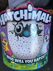 Hatchimals Penguala Pink Egg! New in box! Hard To Find!