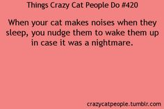 kitty nightmare