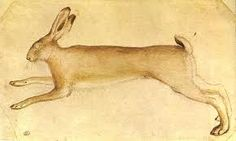 Pisanello, Drawing of a Rabbit, Louvre Museum