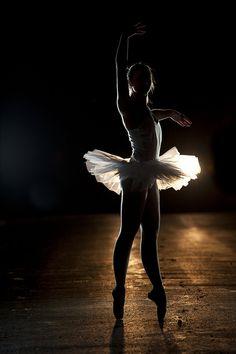 l ballerina silhouette. Shall We Dance, Just Dance, Dance Art, Dance Music, Ballerina Silhouette, Pretty Ballerinas, Ballet Fashion, Dance Poses, Tiny Dancer