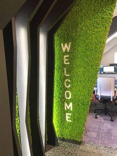 12 Awe Inspiring Moss Wall Ideas - Rhythm of the Home Dental Office Decor, Dental Office Design, Office Interior Design, Green Wall Decor, Vertical Garden Design, Interactive Walls, Moss Wall, Plant Wall, Cafe Design