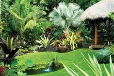 Tropical Garden Designs With Tiki Hut And Pond