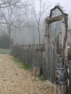 love the old, spooky feeling this photo has with the old gate and fog.