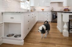 "Dog dishes are ""inset into a small slab of white quartzite. The cabinet above has a tilt-out tray for dog treats.""    Traditional Kitchen by Haddad Hakansson LLC"