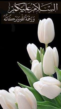 Good Morning Cards, Good Morning Photos, Good Morning Love, Good Morning Messages, Good Morning Greetings, Morning Msg, Image In Arabic, Islamic Birthday Wishes, Good Morning Beautiful Flowers