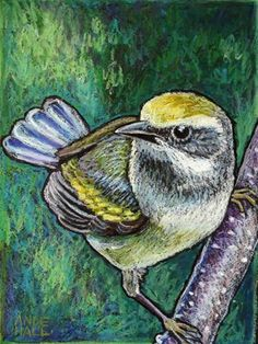 """Daily Paintworks - """"Golden Winged Warbler"""" by Ande Hall"""