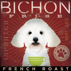 BICHON FRISE coffee company vintage style dog artwork on canvas 12 x 12 by stephen fowler
