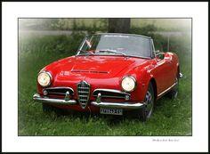 """https://flic.kr/p/tU1HzN   Alfa Romeo Giulia Spider (1962)   La Giulia Spider è stata un'autovettura costruita dall'Alfa Romeo dal 1962 al 1965. L'evoluzione delle vetture nei primi anni '60 portarono l'Alfa Romeo ad incrementare la cilindrata e le prestazioni della Giulietta Spider. La Giulia 1600 Spider """"serie 101.23"""" nasce come l'evoluzione dalla Giulietta Spider """"serie 101.03"""". Le auto sono quasi identiche, tranne che per l'esistenza di una presa d'aria sul cofano del..."""