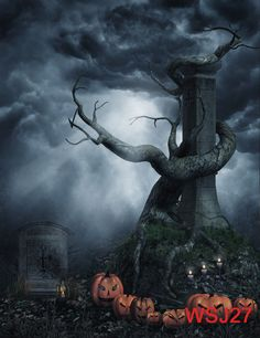 Halloween Vinyl Studio Backdrop CP Photography Prop Photo Background 5x7ft WSJ27