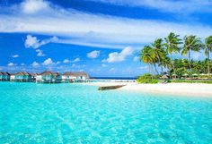 The Maldive Islands | #OMaldives  #travel #travels #holiday #divine #islands  #wanderlust #vacay #relax #bliss #fun #tropics #paradise #sunbath #nofilters #celebrate #exotic #blue #lagoon  #instatravel #instahub #sunshine #travelblog #tbt #explore #instagram #nature #summer #earth #photooftheday