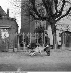 Watersnoodramp (1953)