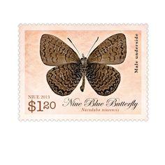 65 Best Butterfly Postage Stamps Images Butterflies Door Bells