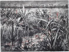 Herbaceous border | William KENTRIDGE | NGV Cool Drawings, Drawing Sketches, Herbaceous Border, Landscape Art, Landscape Architecture, Contemporary Paintings, African Art, Van Gogh, Art Projects