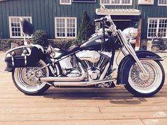 eBay: 2005 Harley-Davidson Softail 2005 Harley Davidson FLSTN #harleydavidson
