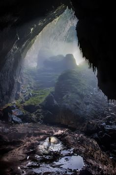 Sơn Đoòng Cave, The World's Largest Cave With a Lost Forest Inside   The Dancing Rest http://thedancingrest.com/2014/10/02/son-doong-cave-the-worlds-largest-cave-with-a-lost-forest-inside/