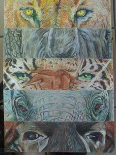 SOLD - The big 5, created by Samuel Friday, medium in pastel, on A3 Cardboard page.