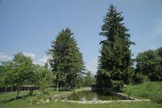 Și-au făcut casa din Prahova după un model tradițional muntenesc de la Muzeul Satului   Adela Pârvu - Interior design blogger River, Traditional, Interior Design, Cottages, Outdoor, Home Decor, Wood Ceilings, Cabin, Nest Design