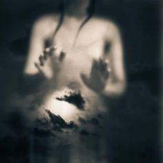 «J'ai ancré l'espérance Aux racines de la vie Face aux ténèbres J'ai dressé des clartés Planté des flambeaux… A la lisière des nuits Des clartés qui persistent Des flambeaux qui se glissent E…