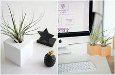 Kochacie  rośliny, a może dopiero szukacie takich, które wybaczą wam  zapominalstwo i brak czasu na codzienne zabawianie rozmową? Lubicie  minimalizm, wyraziste, mocno osadzone w geometrii formy? Cenicie  dbałość o jakość, ręcznie wykonywane przedmioty? Koniecznie  poznajcie Project Cube - p