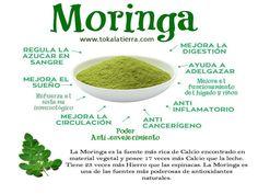 visita: www.tokalatierra.com/ #superfoods #superalimentos #tokalatierra #moringa #comprarmoringa