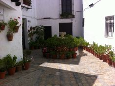 Patio en Vejer