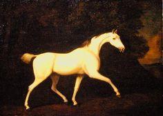 The Earl of Westmorland's Grey Hunter 1786  George Stubbs RA 1724 - 1806