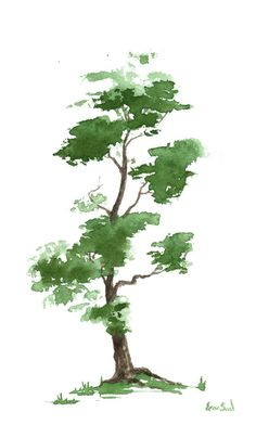 Little Zen Tree 300 - by Sean Seal - print 22.00 - Greeting cards 4.95.  -