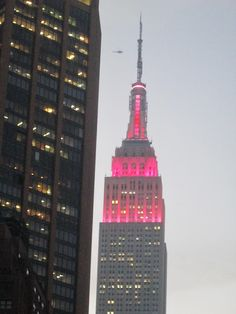 Empire State Building, Feb,14 2013. NYC by voces, via Flickr