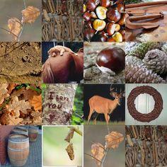 collage herfst