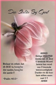 Well Said Quotes 505880970646358402 - Source by sonetteeastes Good Night Blessings, Good Night Wishes, Good Night Sweet Dreams, Morning Blessings, Good Night Messages, Good Night Quotes, Morning Quotes, Christian Poems, Afrikaanse Quotes