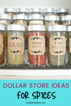 spices organization ideas using cheap items that are fit for your budget - dollar store items