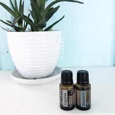 Copaiba and Siberian Fir essential oil recipe for inflammation