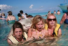 Stingray photobomb... this is hilarious. The longer I look the better it gets. So hilarious!! The look on the face of the girl on the left is PRICELESS!