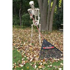 Learn how to create awesome outdoor Halloween decorations for your yard with these spooktastic skele Halloween Outside, Outdoor Halloween, Holidays Halloween, Scary Halloween, Halloween Ideas, Halloween Crafts, Halloween Costumes, Halloween Yard Displays, Halloween Skeleton Decorations