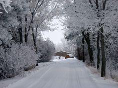 Winter scenery near Watertown, South Dakota