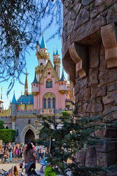 Disneyland. Will someone take me here pretty please!