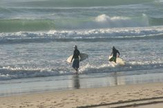 Surfers heading into the water in the early morning