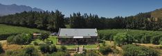 A luxurious country (and pet friendly) house on a working farm in Wolseley. Riverstone House offers all the facilities in a peaceful setting. Pet Friendly Accommodation, Catering, Mountains, Pets, Holiday, Nature, House, Travel, Animals And Pets
