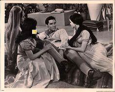 1965 11 24 Harum Scarum = Elvis Presley