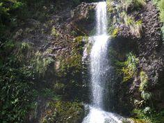 Waterfall at Piha. Taken by me. Tim Whiting.