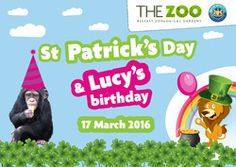 St Patrick's Day and Lucy's Birthday at Belfast Zoo!  http://whatsonni.com/event/32126-st-patricks-day-and-lucys-birthday/belfast-zoological-gardens