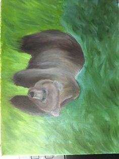 #oilpainting #grizzlybear #impressionism Impressionism, Fish, Cool Stuff, Pets, Artwork, Animals, Cool Things, Animals And Pets, Animales