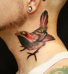 tattoos of curious birds - Google Search